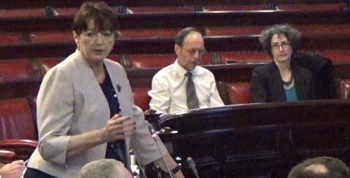 Councillor Roz Gladden (Cabinet Member for Adult and Children's Social Care and Health) responds to concerns about the Liveability service at the Liverpool City Council meeting on the 2nd March 2016