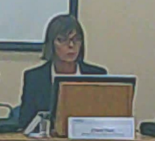 Clare Fish 3rd November 2014 Families Wellbeing Policy and Performance Committee Wirral Council