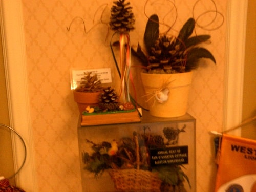 Annual rent from Tam O'Shanter Urban Farm (one pinecone from Bidston Hill)